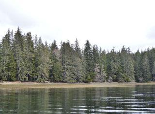 Photo 9: W1/2 SW&NW1/4 Quatsino Sound in : NI Port Hardy Land for sale (North Island)  : MLS®# 866764