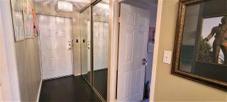 "Photo 21: 204 6631 MINORU Boulevard in Richmond: Brighouse Condo for sale in ""REGENCY PARK TOWERS"" : MLS®# R2490670"