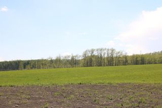 Photo 5: On  Range Road 2.5: Rural Mountain View County Land for sale : MLS®# A1112456