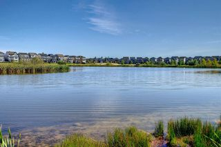 Photo 41: 1302 279 Copperpond Common SE in Calgary: Copperfield Apartment for sale : MLS®# A1146918