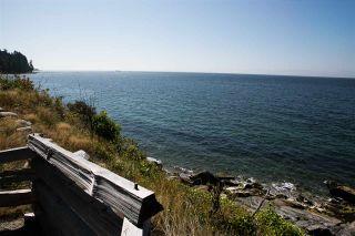 Photo 19: 5285 LITTLE Lane in Sechelt: Sechelt District House for sale (Sunshine Coast)  : MLS®# R2592580