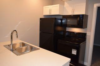 Photo 16: 9116 66 Avenue in Edmonton: Zone 17 House for sale : MLS®# E4263993