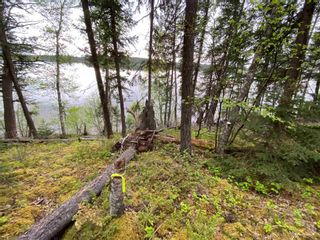 """Photo 12: LOT 7 S SOMERSET Drive: Cluculz Lake Land for sale in """"SOMERSET ESTATES"""" (PG Rural West (Zone 77))  : MLS®# R2596563"""