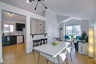 Photo 14: 66 Erin Green Way SE in Calgary: Erin Woods Detached for sale : MLS®# A1094602