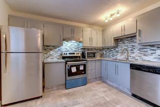 Photo 7: 563 Aboyne Crescent NE in Calgary: Abbeydale Semi Detached for sale : MLS®# A1071517