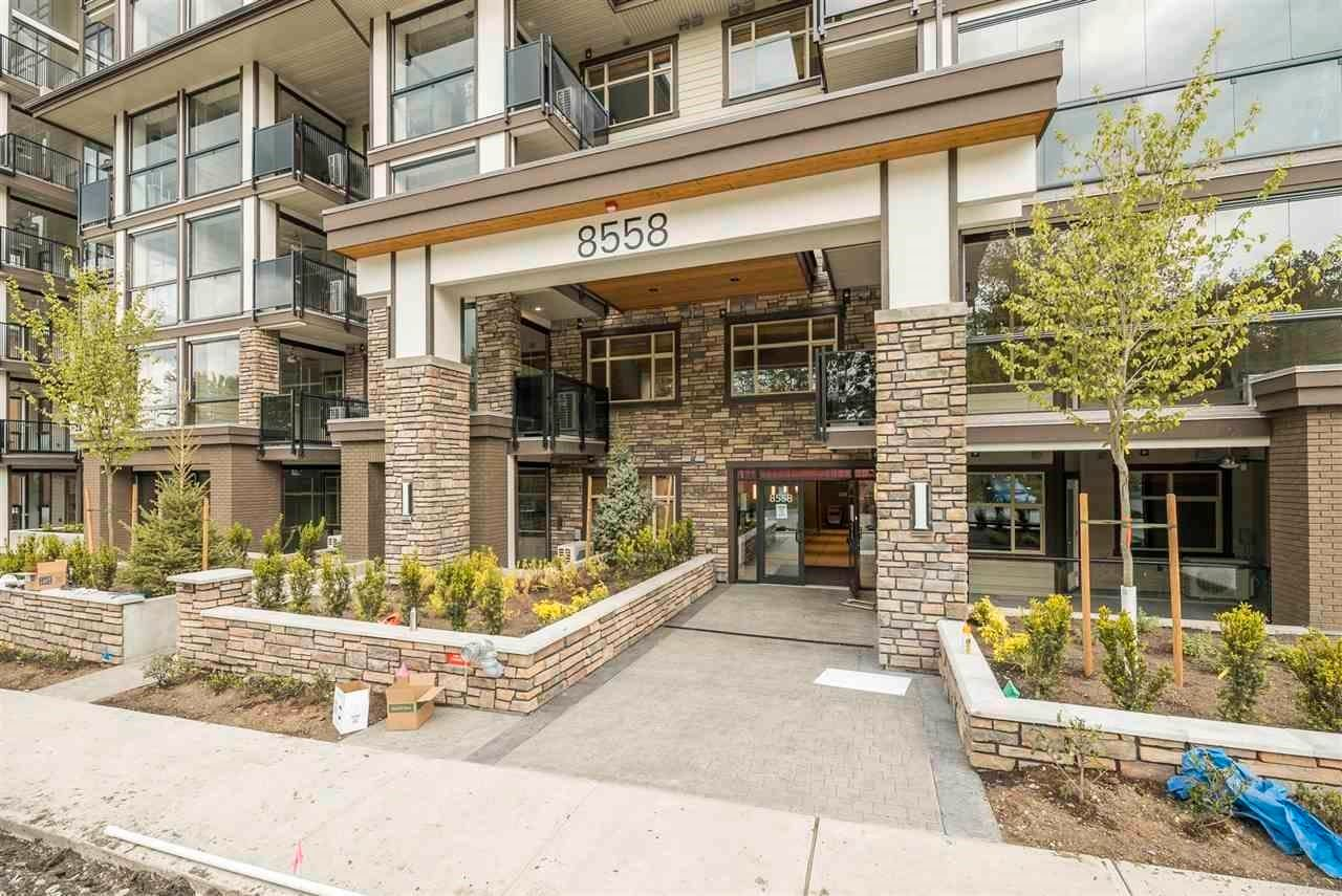 """Main Photo: 202 8538 203A Street in Langley: Willoughby Heights Condo for sale in """"Yorkson Park East"""" : MLS®# R2605740"""
