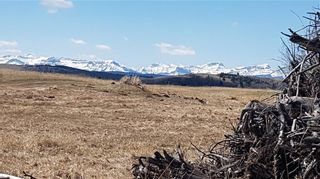 Photo 5: Range Road 55 in Rural Rocky View County: Rural Rocky View MD Land for sale : MLS®# C4295902