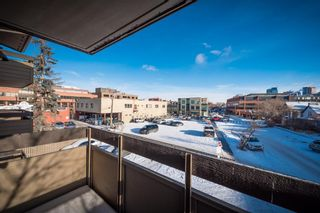 Photo 19: 302 1222 Kensington Close NW in Calgary: Hillhurst Apartment for sale : MLS®# A1056471