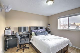 Photo 21: 813 Applewood Drive SE in Calgary: Applewood Park Detached for sale : MLS®# A1076322