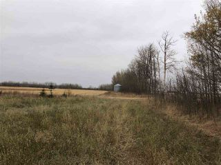 Photo 13: TWP RD 583 Range Rd 271: Rural Westlock County Rural Land/Vacant Lot for sale : MLS®# E4218433