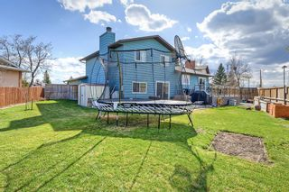 Photo 41: 420 Templeby Place NE in Calgary: Temple Detached for sale : MLS®# A1107183