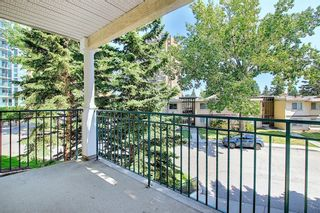 Main Photo: 219 2144 Paliswood Road SW in Calgary: Palliser Apartment for sale : MLS®# A1125359