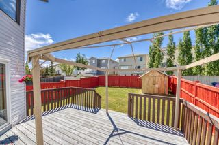 Photo 42: 23 Citadel Meadow Grove NW in Calgary: Citadel Detached for sale : MLS®# A1149022