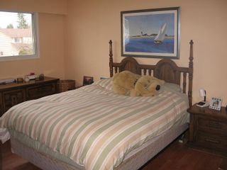 Photo 7: 11018 83A Avenue in North Delta: Home for sale : MLS®# F2903327