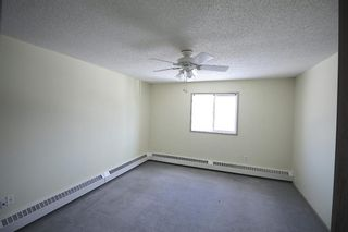 Photo 10: 314 10 Dover Point SE in Calgary: Dover Apartment for sale : MLS®# A1073058