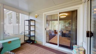 Photo 42: 144 QUESNELL Crescent in Edmonton: Zone 22 House for sale : MLS®# E4265039