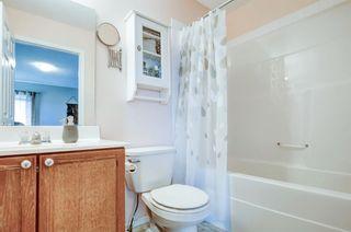 Photo 23: 27 Saddlebrook Place NE in Calgary: Saddle Ridge Semi Detached for sale : MLS®# A1122360