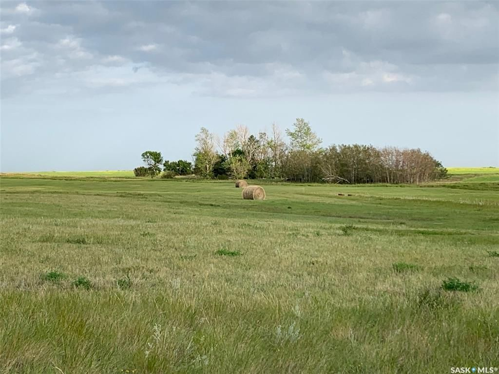 Main Photo: 36.43 ACRES - FINDLATER in Findlater: Lot/Land for sale : MLS®# SK871870