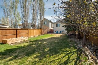 Photo 29: 80 Mt Apex Crescent SE in Calgary: McKenzie Lake Detached for sale : MLS®# A1104238