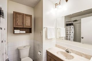 Photo 26: 459 Queen Charlotte Road SE in Calgary: Queensland Detached for sale : MLS®# A1122590