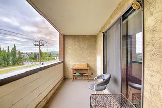 Photo 20: 212 8604 48 Avenue NW in Calgary: Bowness Apartment for sale : MLS®# A1138571