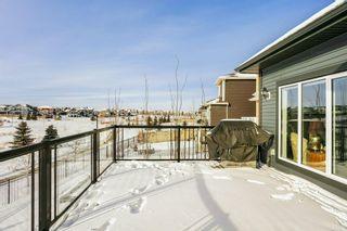 Photo 28: 8504 218 Street in Edmonton: Zone 58 House for sale : MLS®# E4229098