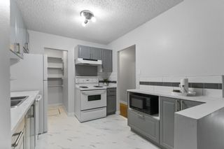 Photo 14: 9235 172 Street in Edmonton: Zone 20 Carriage for sale : MLS®# E4251853