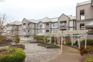 Photo 20: 210 3008 Washington Ave in VICTORIA: Vi Burnside Condo for sale (Victoria)  : MLS®# 804493