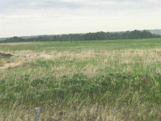 Photo 2: TWP 580 Rg Rd 240 Sturgeon County: Rural Sturgeon County Rural Land/Vacant Lot for sale : MLS®# E4248027