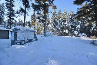 Photo 25: 2095 DOG CREEK Road in Williams Lake: Esler/Dog Creek House for sale (Williams Lake (Zone 27))  : MLS®# R2530721