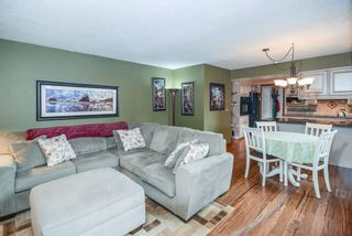 Photo 8: 21341 124 Avenue in Maple Ridge: West Central House for sale : MLS®# R2096539