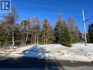 Photo 1: Lot 1 Balsam Avenue in Corner Brook: Vacant Land for sale : MLS®# 1228666