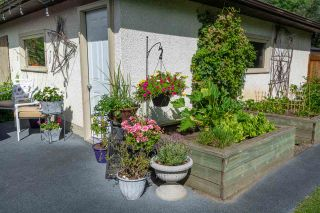 Photo 35: 9719 142 Street in Edmonton: Zone 10 House for sale : MLS®# E4238430
