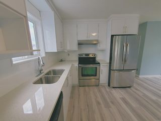 Photo 14: 23 Erin Meadows Court SE in Calgary: Erin Woods Detached for sale : MLS®# A1124454