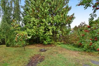 """Photo 18: 4785 FAIRLAWN Drive in Burnaby: Brentwood Park House for sale in """"Brentwood Park"""" (Burnaby North)  : MLS®# R2305657"""