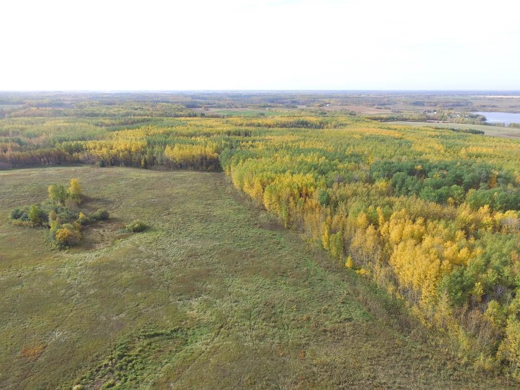 Photo 5: Photos: N1/2 SE19-57-1-W5: Rural Barrhead County Rural Land/Vacant Lot for sale : MLS®# E4217154