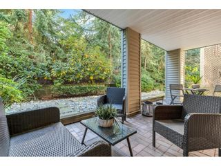 """Photo 8: 117 22022 49 Avenue in Langley: Murrayville Condo for sale in """"Murray Green"""" : MLS®# R2620462"""