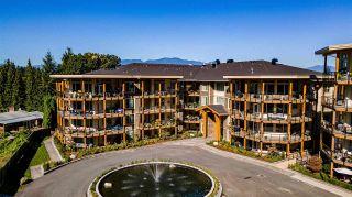 "Photo 1: 108 45754 KEITH WILSON Road in Chilliwack: Vedder S Watson-Promontory Condo for sale in ""Englewood Courtyard Platinum 3"" (Sardis)  : MLS®# R2576567"