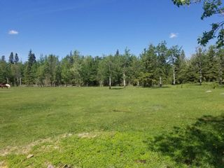 Photo 14: 57518 RGE RD 233: Rural Sturgeon County House for sale : MLS®# E4235337