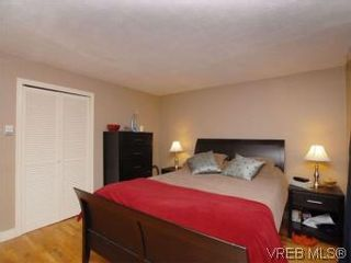 Photo 11: 843 Tulip Ave in VICTORIA: SW Marigold House for sale (Saanich West)  : MLS®# 554188