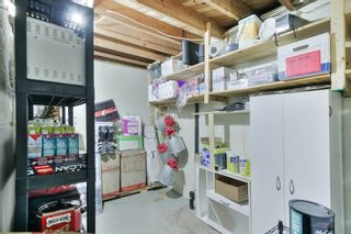 Photo 30: 16811 79A Avenue in Edmonton: Zone 22 House for sale : MLS®# E4249394