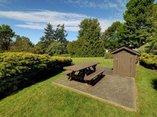 Photo 5: 407 105 E Gorge Rd in : Vi Burnside Condo for sale (Victoria)  : MLS®# 855927