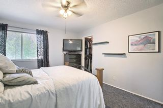 Photo 23: 287 Chaparral Drive SE in Calgary: Chaparral Detached for sale : MLS®# A1120784