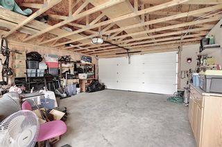 Photo 45: 87 Taravista Street NE in Calgary: Taradale Detached for sale : MLS®# A1084185