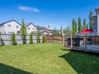 Photo 33: 619 Copperpond Circle SE in Calgary: Copperfield Detached for sale : MLS®# A1114398
