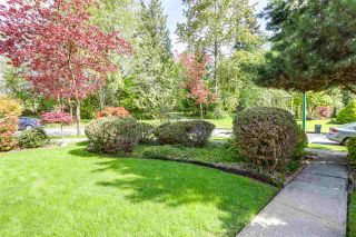 Photo 19: 8018 WOODHURST Drive in Burnaby: Forest Hills BN House for sale (Burnaby North)  : MLS®# R2164061