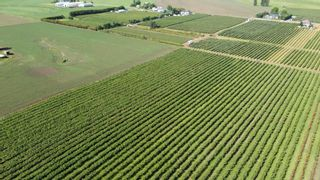 Photo 13: 7121 BEHARRELL Road in Abbotsford: Matsqui Land for sale : MLS®# R2620820