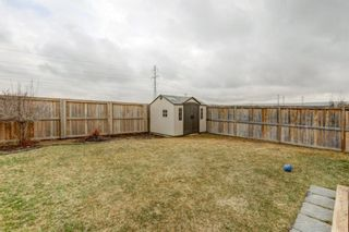 Photo 28: 53 EVANSDALE Landing NW in Calgary: Evanston Detached for sale : MLS®# A1104806