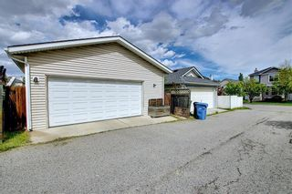 Photo 45: 47 INVERNESS Grove SE in Calgary: McKenzie Towne Detached for sale : MLS®# C4301288