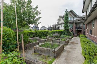 """Photo 3: 204 6706 192 Diversion in Surrey: Clayton Townhouse for sale in """"One92"""" (Cloverdale)  : MLS®# R2070967"""